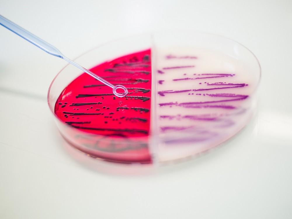 Lanagram laboratoire d 39 analyses agro alimentaires et d 39 eaux for Laboratoire d analyse salon de provence